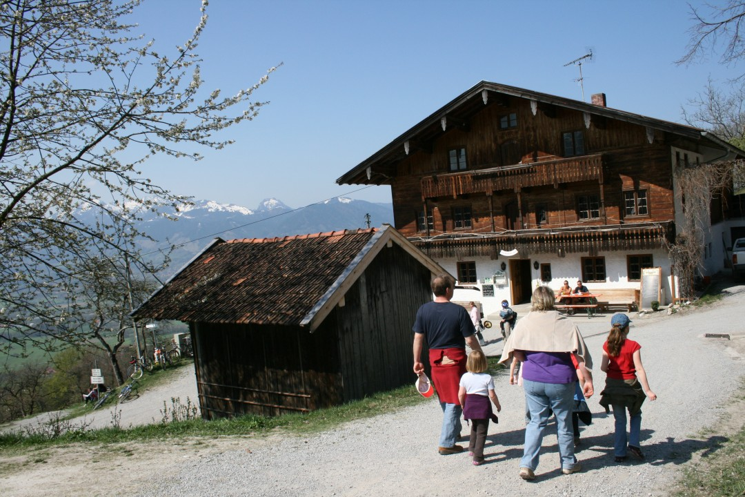 Wanderung zur Dandlberg Alm