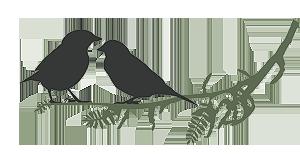 Grafik 2 Vögel auf einem Zweig